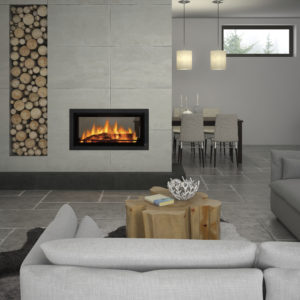 Canature P11 Double Sided Insert - Wood Stove Fireplace Wholesale - South Africa